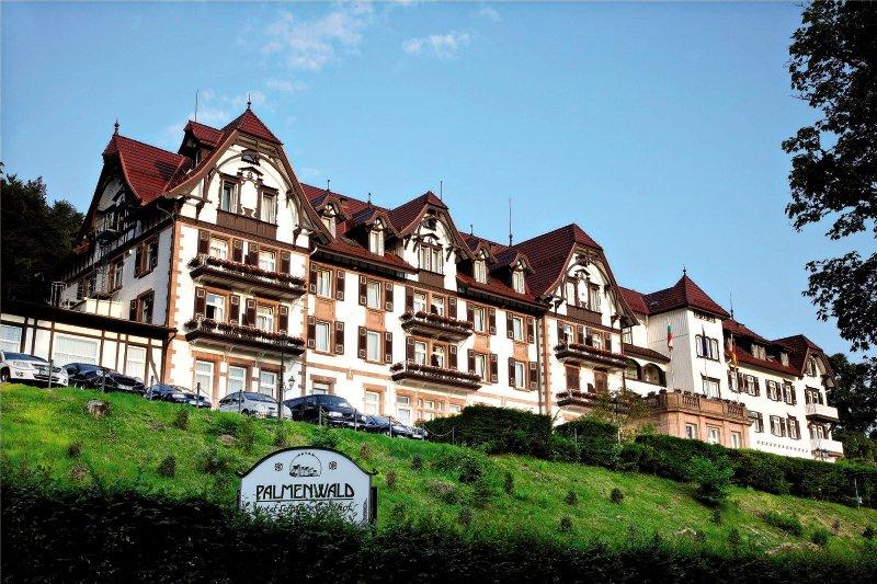 Wellnesshotel Schwarzwaldhof Palmenwald