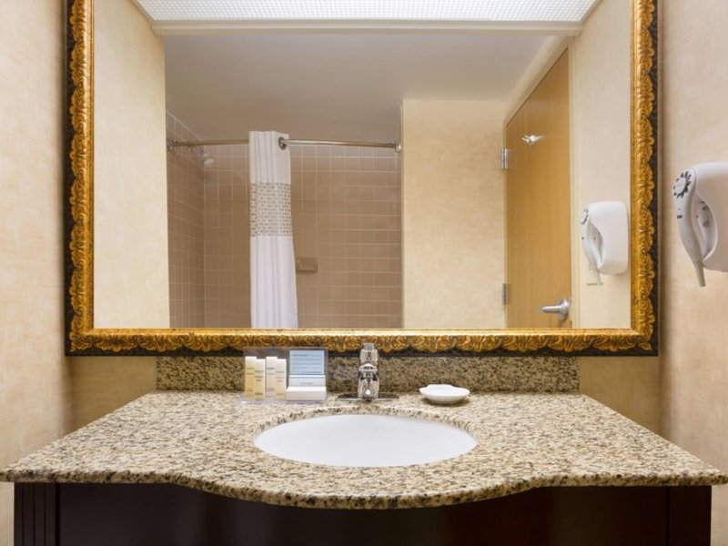 Hampton Inn Dallas-Irving-Las Colinas Badezimmer