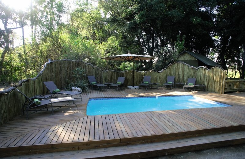 Moremi Crossing Pool