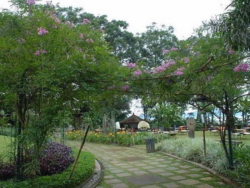 The Green Forest Resort Garten