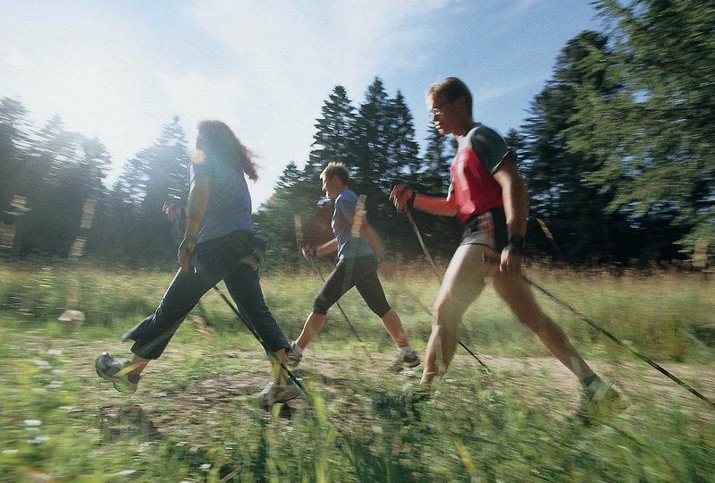 mD Grüner Wald Sport und Freizeit