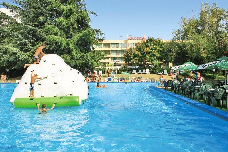 Ambassador Pool