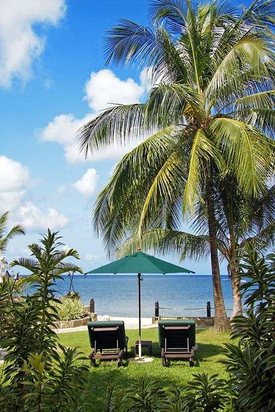 Club Coral Reef Garten