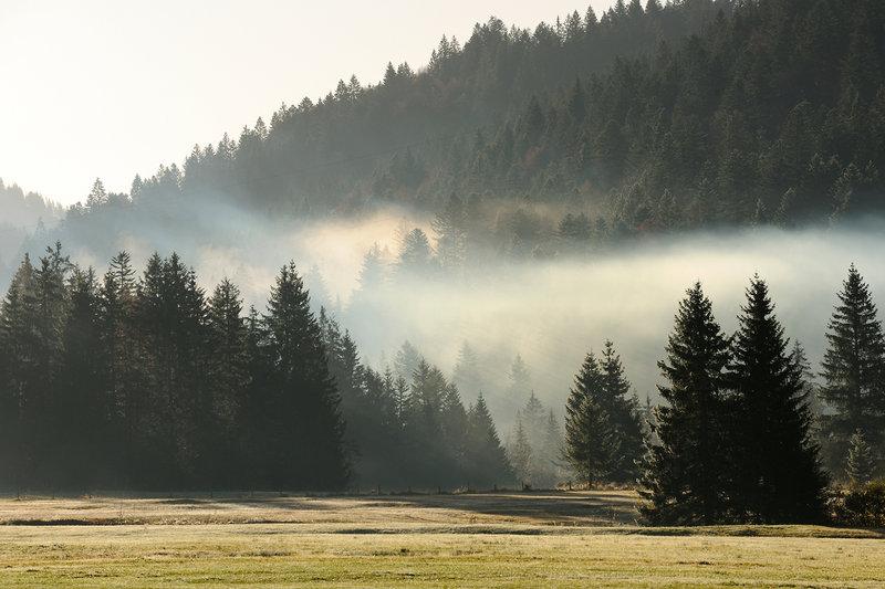 Hubertus Landschaft