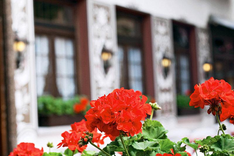 Hotel Felsenkeller Garten
